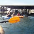 group_kayak_snake_river