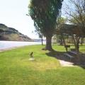 snake_river_park_picnic