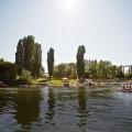 swim_boat_snake_river
